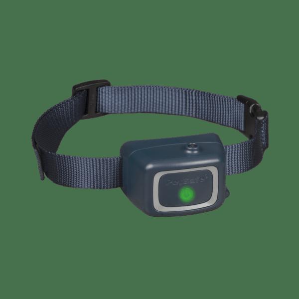PetSafe Antibellhalsband mit Spray PBC44-16393